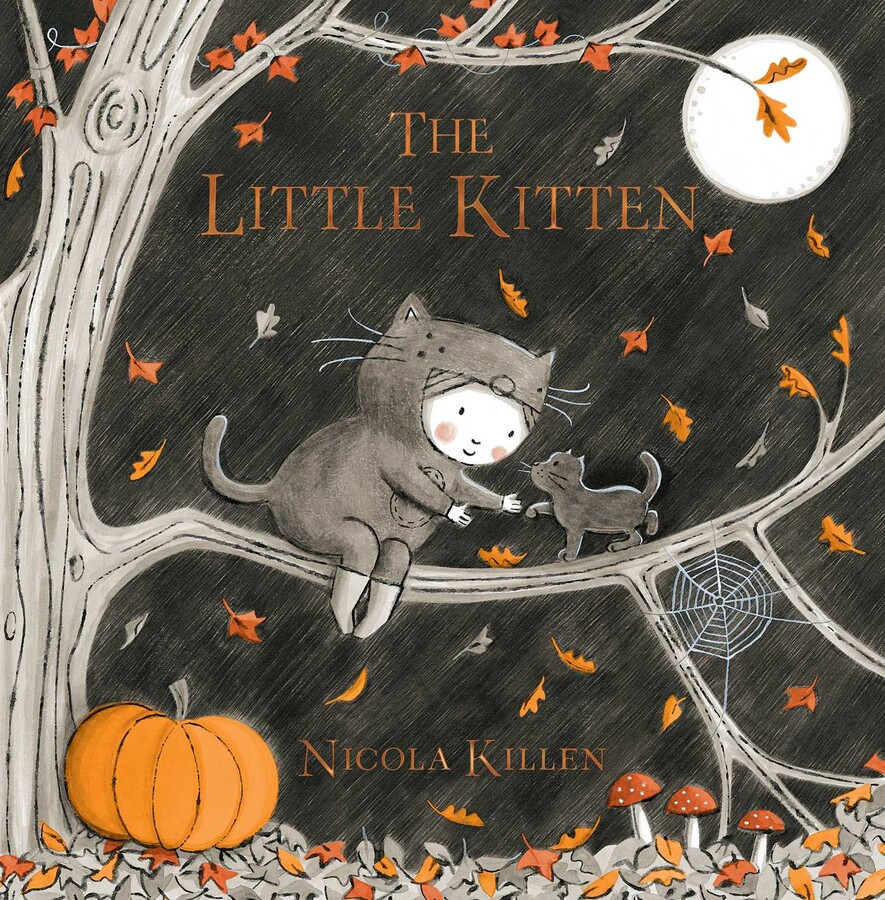The Little Kitten Picture Book
