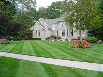Lawn Care Services in Chesterfield, VA