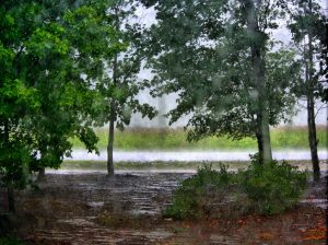 Chesterfield VA Lawn Care | Picture Perfect Lawn Maintenance | (804) 530-2540