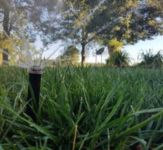 Fall aeration and seeding | How to Prep Your Yard for Core Aeration and Seeding this Fall in 3 Easy Steps } Lawn Care | Fertilization | Picture Perfect Lawn Maintenance | (804) 530-2540