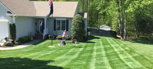 Professional Soil Testing PPLM | (804)530-2540 | Green Lawns In VA