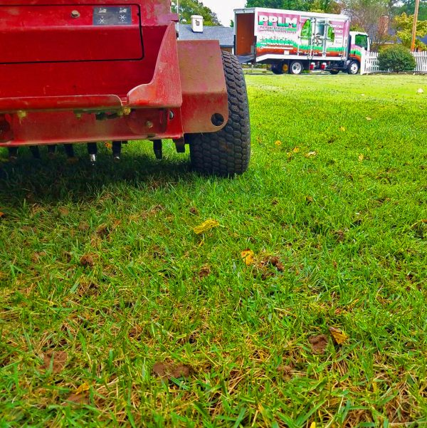 How to Prep Lawn for Reseeding