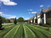 Fox Creek Lawn Aeration Seeding Fertilization | Picture Perfect Lawn Maintenance | (804) 530-2540