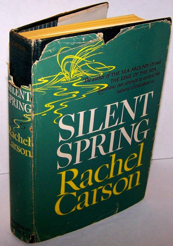 Rachel Carson Silent Spring Essay Pictures And Ideas On Carver  Silent Spring Rachel Carson Ap Essay Paper