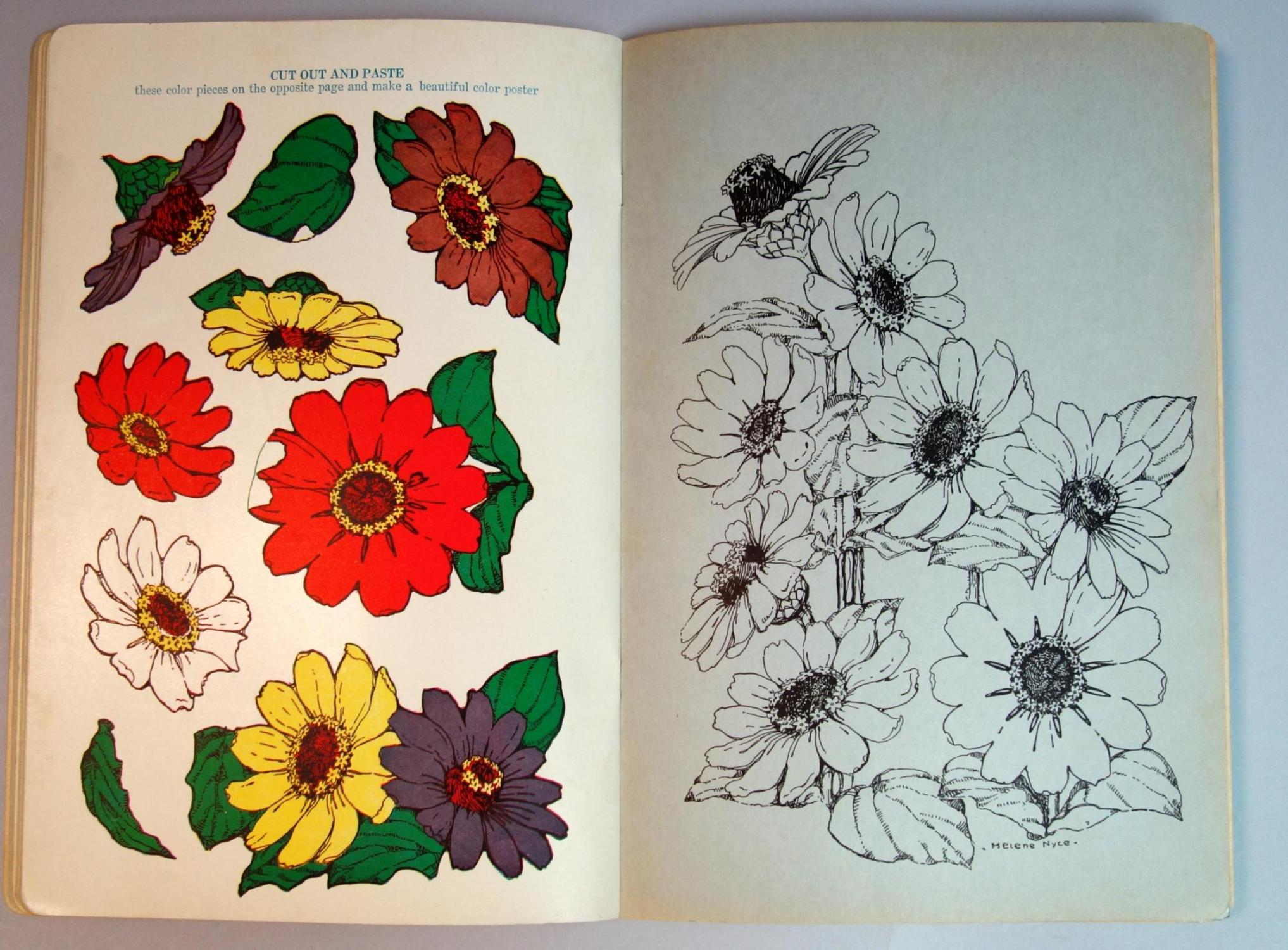 The Patchwork Poster Book Of Flowers To Cut Out And Paste