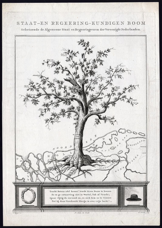 Rare Antique Print-TREE-NETHERLANDS-POLITICAL SYSTEM