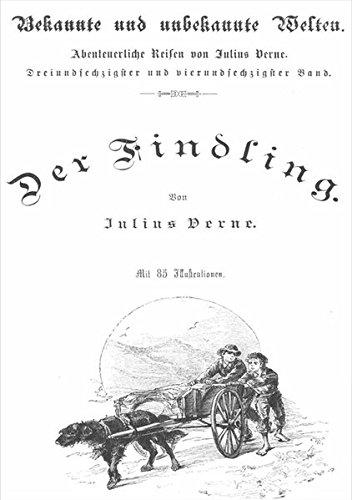 Der Findling von Jules Verne: Neu Taschenbuch (2012