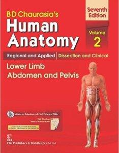 daurasia   human anatomy regional applied mrudula chandrupatla also wall chart abebooks rh