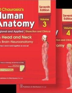 daurasia   human anatomy regional and applied  mittal also wall chart abebooks rh
