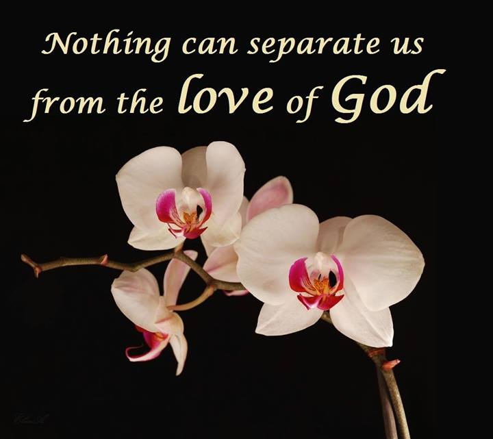 Image result for Nothing shall separate us from the love of God