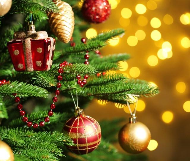 Christmas Tree Farmers Association Of New York