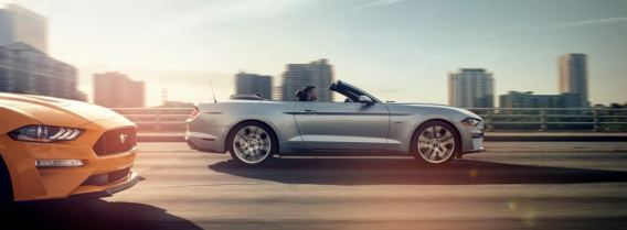 The insurance industry earns more than $1 trillion every year, according to the insurance information institute. Ford Mustang Ecoboost Vs Ecoboost Premium Vs Gt Vs Gt Premium Springfield Il