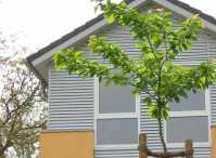 Wohnung mieten in Schwentinental - ImmobilienScout24