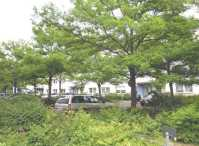 Garagen & Stellpltze in Rosenthal (Pankow) (Berlin)