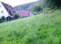 Grundstcke Netphen - ImmobilienScout24