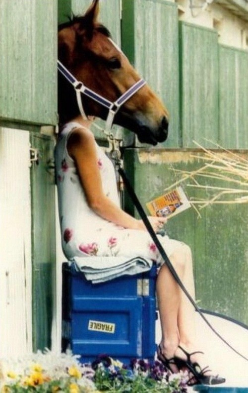 The horse girl