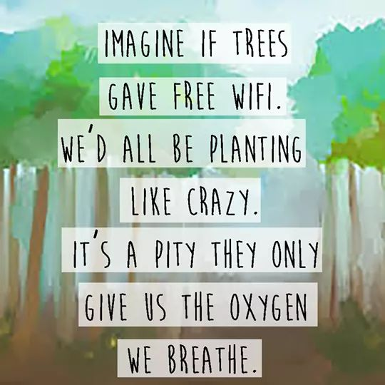 Imagine if trees give us free wifi, we all would plant like crazy