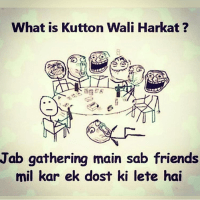 Friends gathering kutton wali harkat - mind blowing