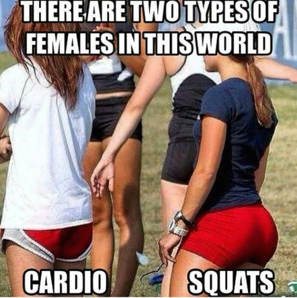 there are two types of females - cardio and squats