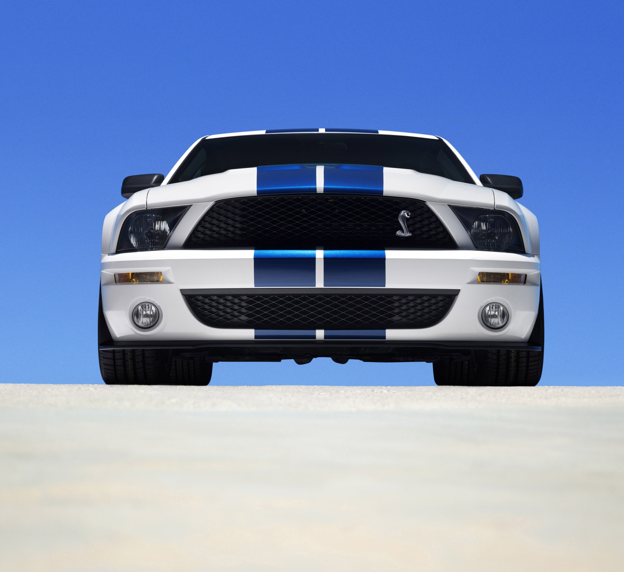 hight resolution of 2007 ford mustang shelby gt500