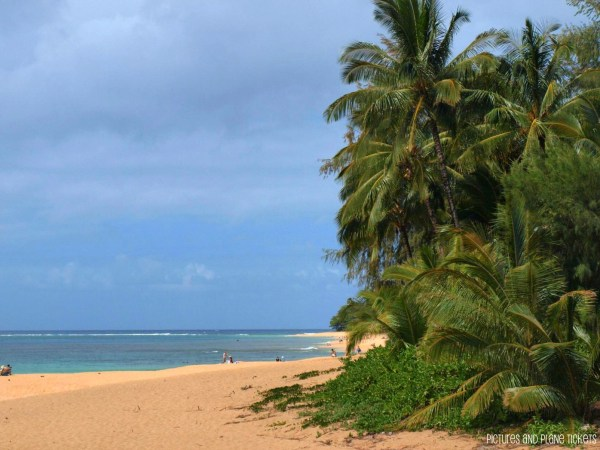 Guest Post Top Five Beaches In Hawaii Meet Paradise