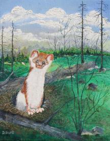 Springtime 12x15 Canvas