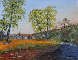 Homesteader 16x20 Canvas