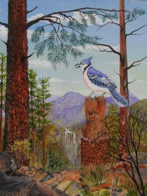 Hilltop View 16x12 Canvas