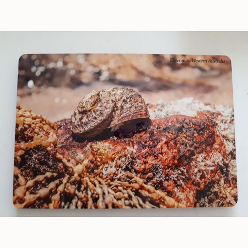 beach australia table mat