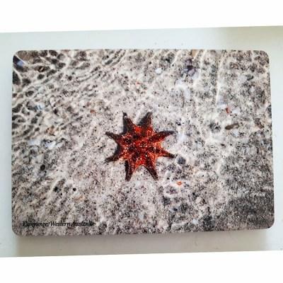 ocean starfish placemat Australia