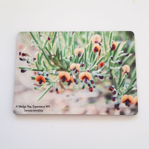 wildflower placemat Wedge Pea