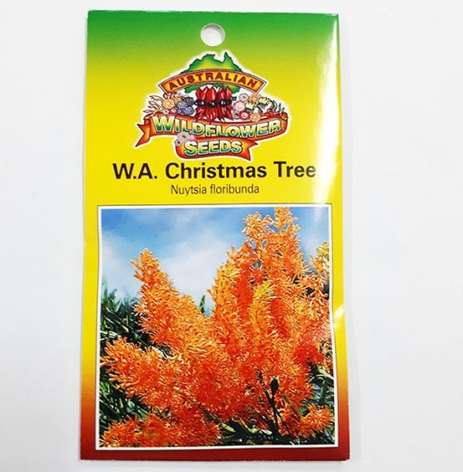 Christmas tree western australia