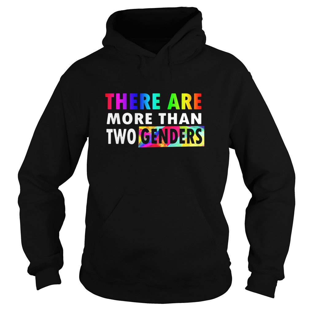 There are More Than Two Genders LGBT Hoodie