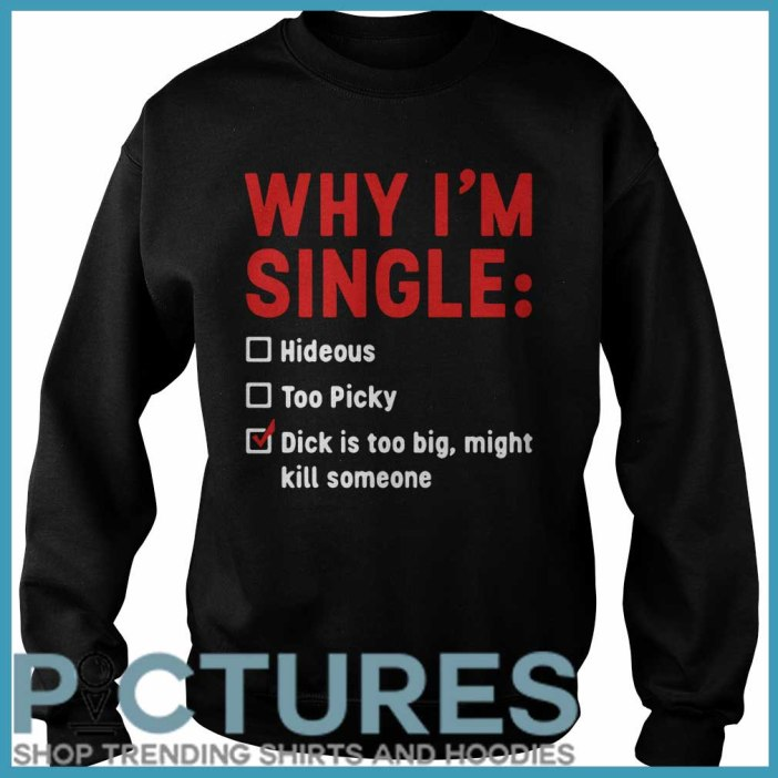 Why I'm Single Hideous Too Picky Dick Is Too Big, Might Kill Someone Sweatshirt