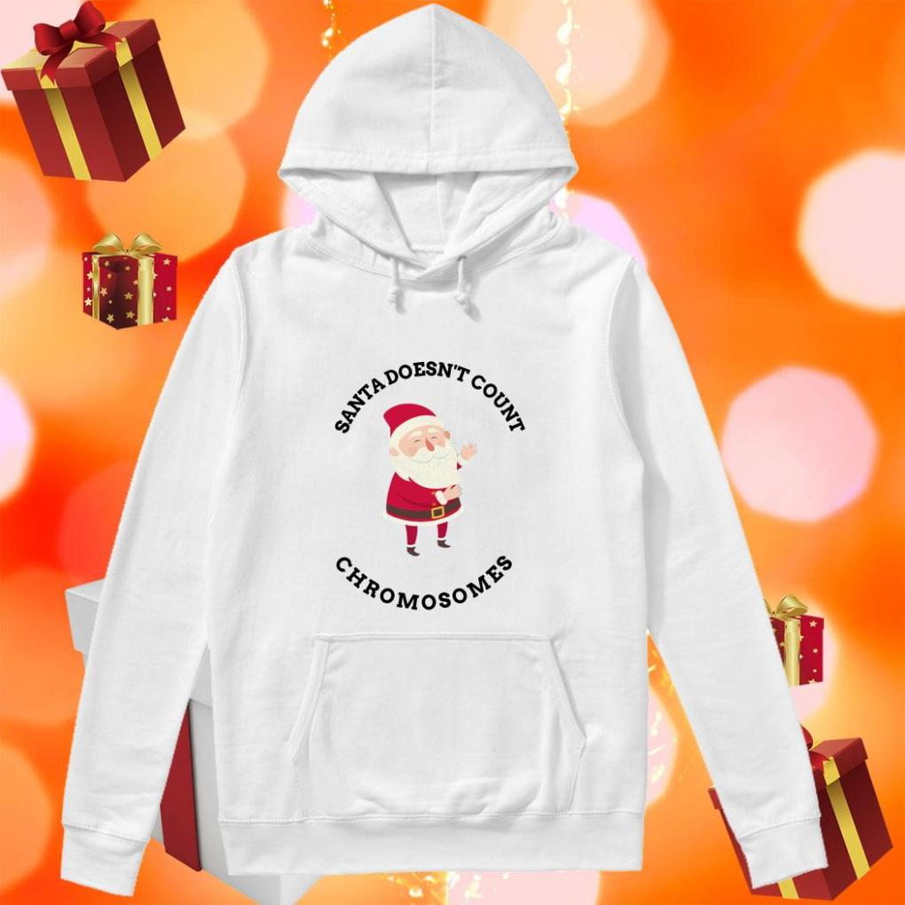 Santa Doesn't Count Chromosomes hoodie