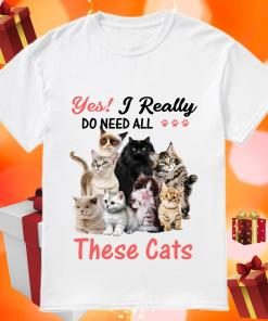 Yes! I really do need all these cats shirt