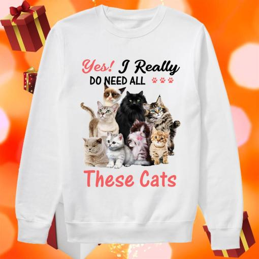 Yes! I really do need all these cats sweater