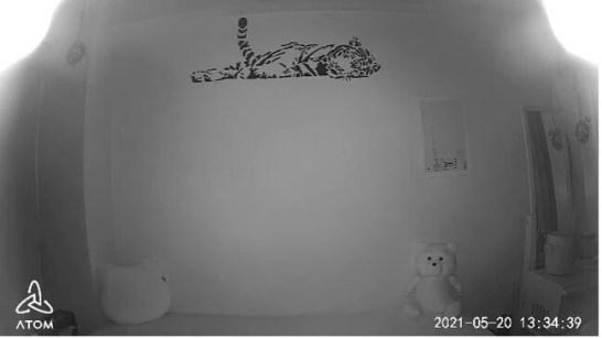ATOM Cam 2 製品版で現出した上部左右に見えにくい箇所のある赤外線ナイトビジョン画像