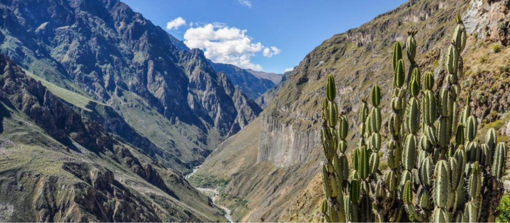 Peru Tours -Colca Canyon view