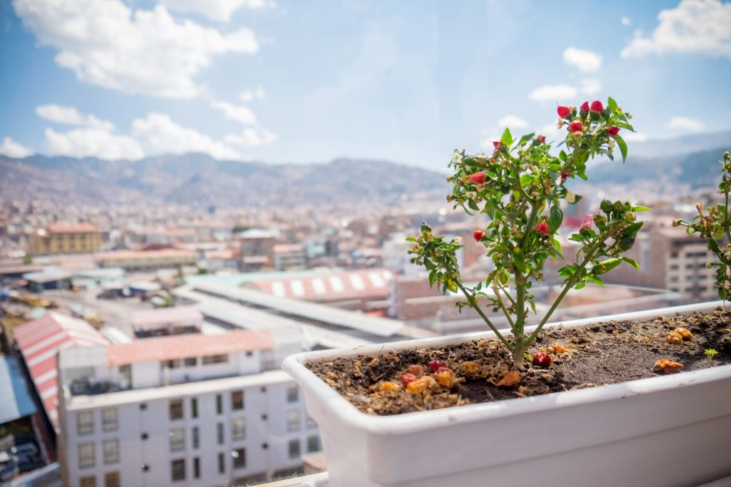 Cooking class in Cusco - View from Rooftop Kitchen.