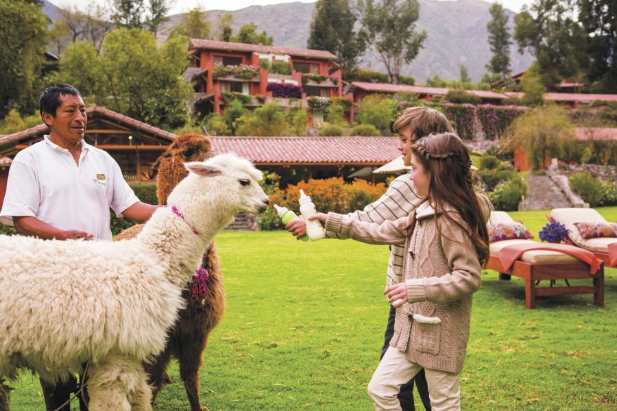 Luxury hotels in Sacred Valley - Kids feeding alpacas at Belmond hotel.