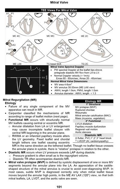 Virtual TEE: TEE Exam Study Notes Book