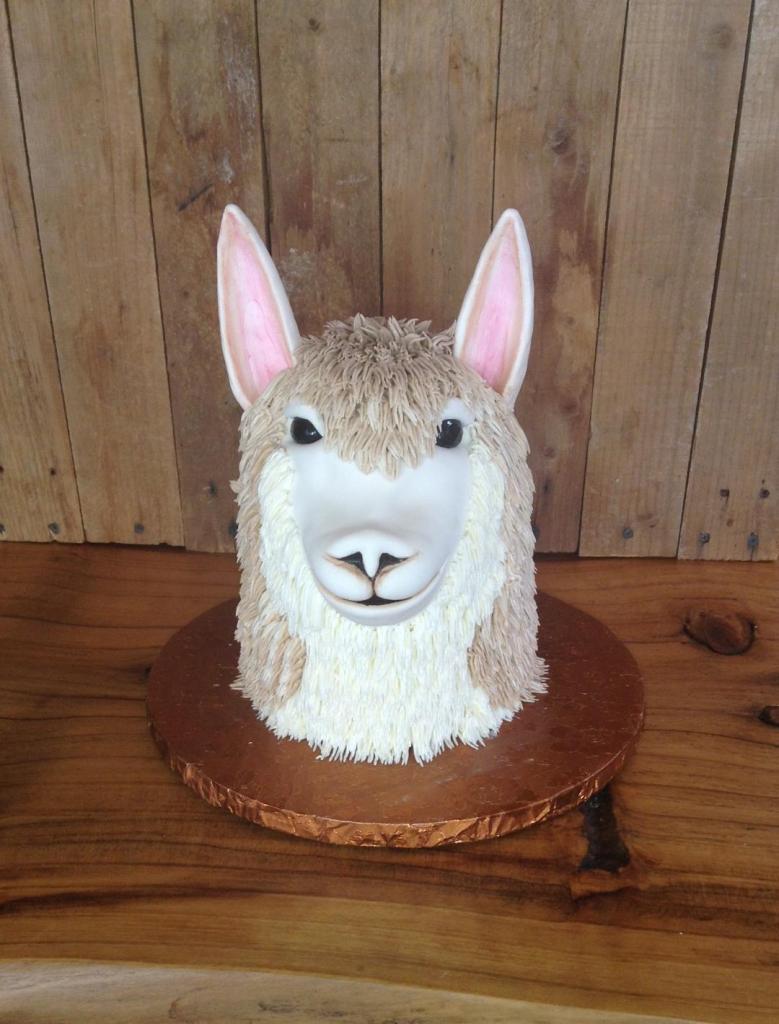 Animal Cakes Piece Of Cake Bakery