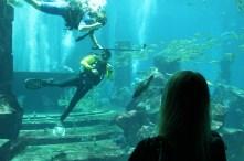 friendly diver