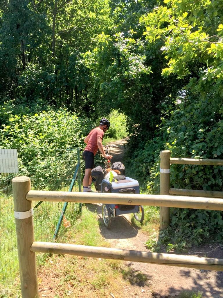 vannes vélo chien cariole randonnée