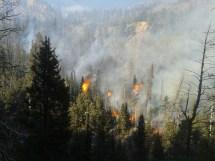Mountain Winds Fan Fern Lake Fire Pied Type