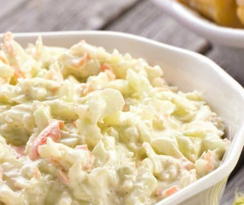 homemade coleslaw with mayonnaise in white bowl on picnic table with green placemat