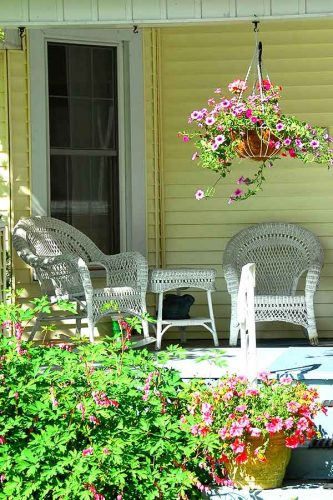 porch with white wicker furniture, a hanging plant with purple flours, yellow siding on the house, white screen door and green floral bush and more potted plants in the foreground
