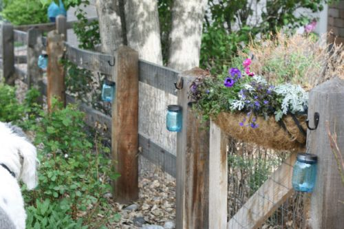 mason jars with black handles and hooks hanging from a wooden fence with a flower box holding pink and purple flowers and trees in the background