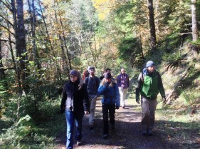 Hiking in the HJ Andrews Experimental Forest